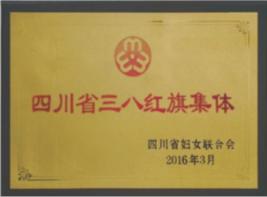 四川省三八红旗集体